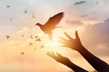 Tuinposter Vogel Woman praying and free the birds flying on sunset background, hope concept