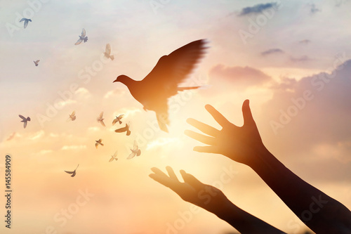 Fototapete Woman praying and free the birds flying on sunset background, hope concept