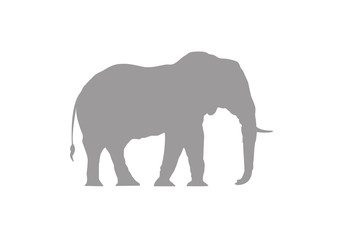 Elephant minimal vector illustration, silhouette isolated on a white background