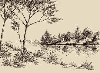 Hand drawn artistic landscape. River banks, trees and vegetation