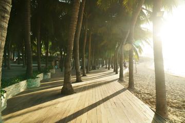 Morning tourist embankment with palm trees along beach at Dadonghai Bay on Hainan Island, China