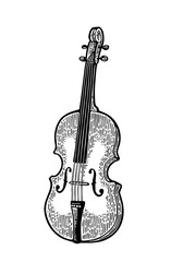 Violin. Vintage black engraving illustration