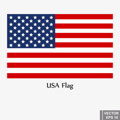 Vector USA flag for America isolated on white background. The icon.