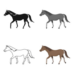 Horse icon in cartoon style isolated on white background. Hippodrome and horse symbol stock vector illustration.