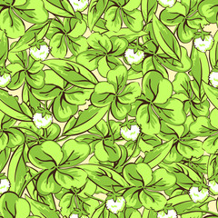 Cartoon hand drawing leaves and flowers of clover seamless pattern, vector background. For fabric design, wallpaper, wrapper, print