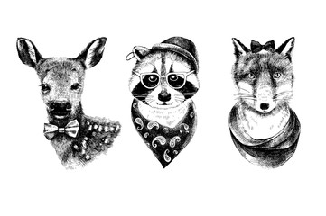 Fototapete - Dressed up hand drawn animals hipsters set.