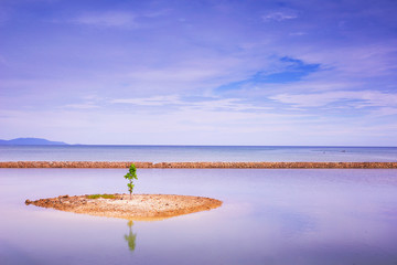 Ocean nature background. Sprout of a mangrove tree on a tiny island in vast sea. Horizontal view for desktop Wallpaper.