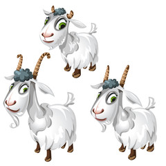 Cute goats with green eyes. Vector animals