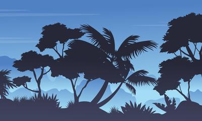 Silhouette of rain forest landscape