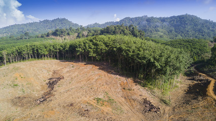 Deforestation. Logging. Aerial drone view of environmental destruction of rainforest