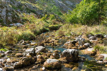 The Rio Bulnes leads along the Canal del Texu, a trackway between the village Bulnes and Poncebos at the river Rio Cares in the Picos de Europa