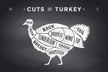 Cut of meat set. Poster Butcher diagram, scheme - Turkey. Vintage typographic hand-drawn turkey silhouette on chalkboard background for butcher shop, restaurant menu, food theme. Vector Illustration
