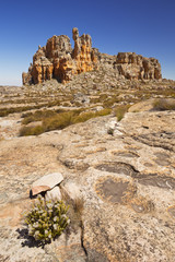 Desert scenery in Cederberg Wilderness, South Africa