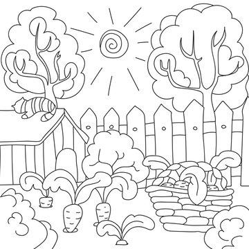 vector coloring book carrots in the garden