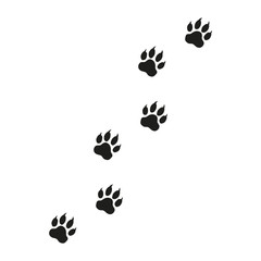 Illustration Paw Prints Cat