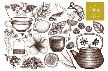 Vector tea sketch collection