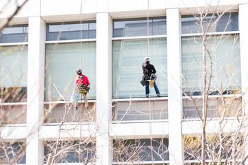 窓拭き清掃員