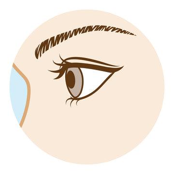 Eye -Body part, Side view  目 ボディパーツ 側面