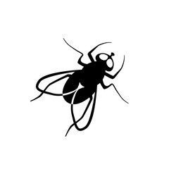 Black flat fly vector icon