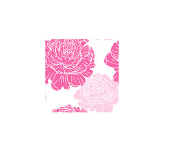 Seamless floral pattern with peonies. Pink flowers on a white background.
