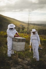 Male and female beekeepers working on beehive at apiary