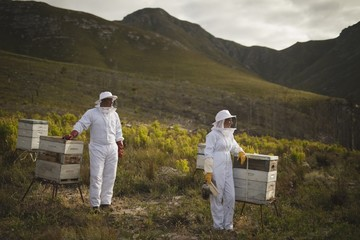 Beekeepers standing by beehives on field