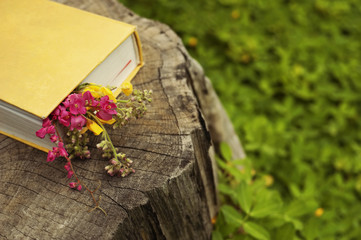 Romantic book with flowers