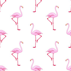 Vector pink flamingo bird seamless pattern. Hand drawn sketch with the wild animal