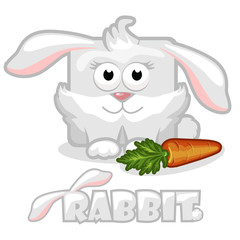 square  rabbit with carrot
