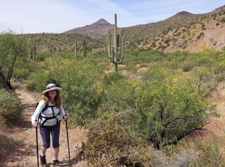 A Woman Hikes in Spur Cross Ranch Conservation Area
