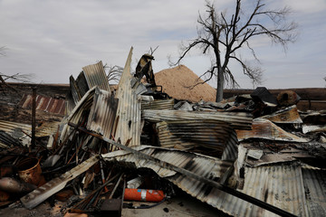 The Wider Image: Deadly U.S. wildfires leave ranches in ruins