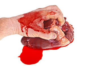 Raw beef heart in men's hand on a white background