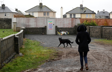 A woman walks her dog near to the site where the remains of an unknown number of babies and toddlers were found buried, in what used to be the grounds of the mother-and-baby home