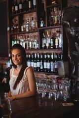 Portrait of beautiful female bar tender