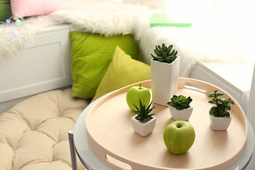 Tray with decorative plants on table in modern flat