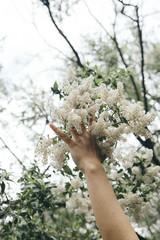 reaching for you