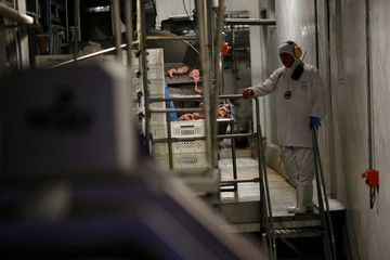 Employee is seen during a technical visit of Brazil's Agriculture Minister Blairo Maggi at the Brazilian meatpacker JBS SA in the city of Lapa