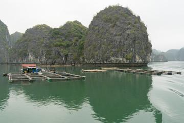 Ha Long Bay fish farms cloudy