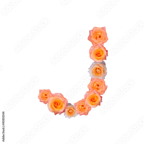 The Letter J In Alphabet Bloom Roses Ilration Set Old Rose Pink Color Isolated