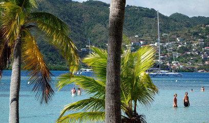 Palm trees are seen in this general view of the beach at the Club Med Les Boucaniers vacation resort at Saint Anne in the French Caribbean island of Martinique
