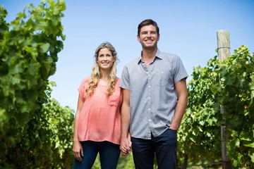 Happy couple holding hands at vineyard