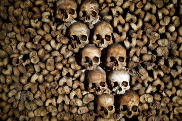 Detail of human skulls and bones which are stacked in the ossuary room in the catacombs of Paris
