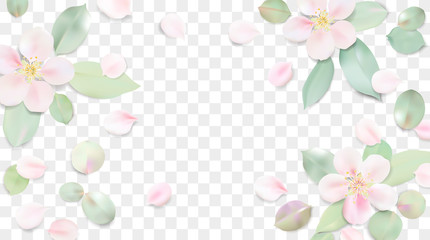 Pastel background with flower leaves.