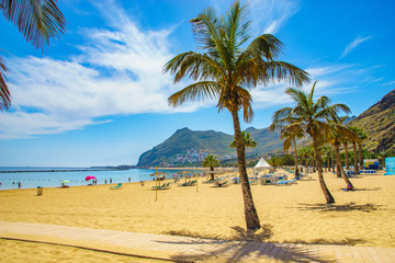 Tenerife, Canary Islands, Spain-Las Teresitas beach near San Andres
