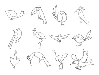 bird thin line icon hand deawn vector set line art illustration