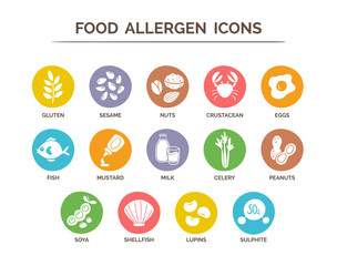 Food safety allergy icons set. 14 food ingredients that must be declared as allergens in the EU. EPS 10 vector. Useful for restaurants and meals.