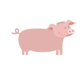 Farm pet pig hand drawn vector illustration isolated on white background. Cute farm animal, domestic livestock in cartoon style.
