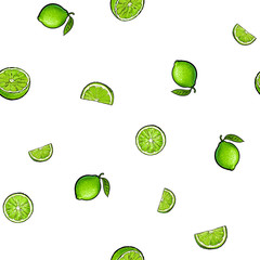 Seamless pattern of whole and half green lime fruits, textile, wrapping paper, backdrop design, sketch vector illustration on white background. Seamless pattern of hand drawn limes, whole and half