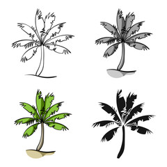 Palm tree icon in cartoon style isolated on white background. Surfing symbol stock vector illustration.