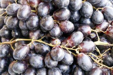 Brushes of ripe black grapes, close-up food background